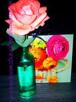 picsart_03-01-01-43-19.jpg