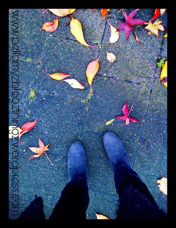 PicsArt_11-15-09.34.12