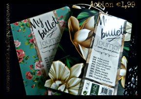 Bullet Journal Action  (written in english & dutch)  Mini Shoplog for My Bullet Journal