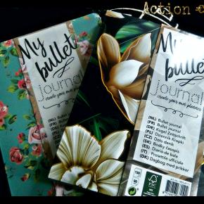 Bullet Journal Action  (written in english & dutch)  Mini Shoplog for My BulletJournal
